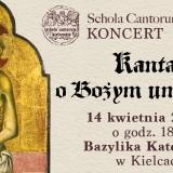 kantata-facebook2